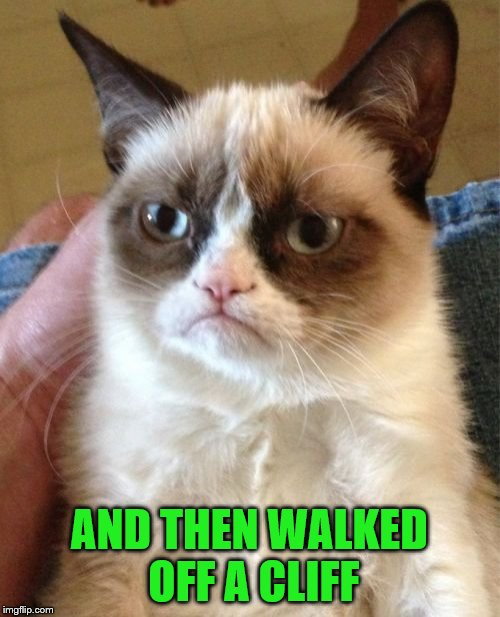 Grumpy Cat Meme | AND THEN WALKED OFF A CLIFF | image tagged in memes,grumpy cat | made w/ Imgflip meme maker