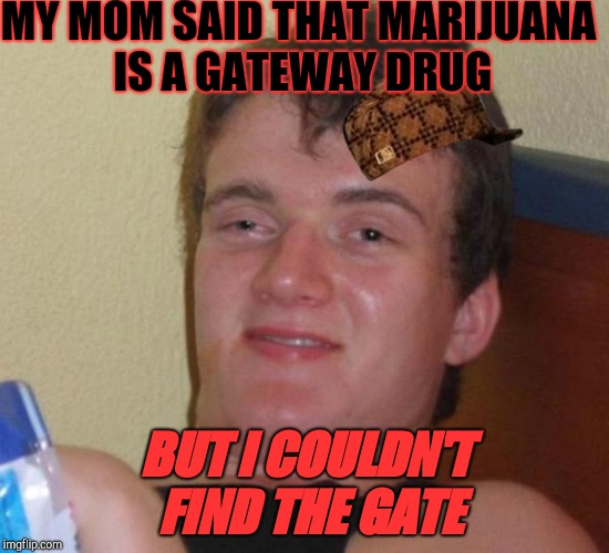 stoned buzzed high dude bro | MY MOM SAID THAT MARIJUANA IS A GATEWAY DRUG BUT I COULDN'T FIND THE GATE | image tagged in stoned buzzed high dude bro,scumbag | made w/ Imgflip meme maker