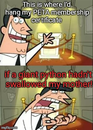 This is where I'd hang my PETA membership certificate  | This is where I'd hang my PETA membership certificate if a giant python hadn't swallowed my mother! | image tagged in this is where i'd hang my peta membership certificate | made w/ Imgflip meme maker