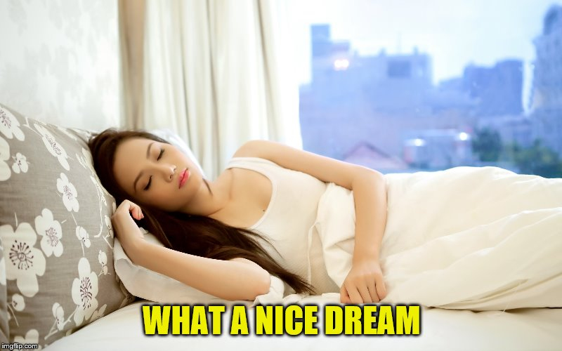 WHAT A NICE DREAM | made w/ Imgflip meme maker