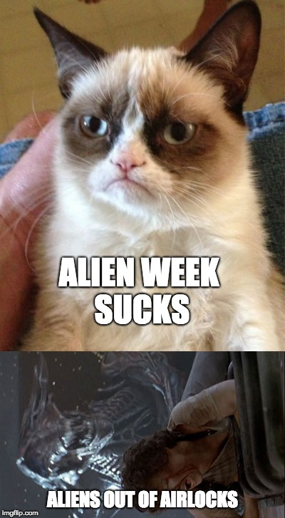 ALIEN WEEK SUCKS ALIENS OUT OF AIRLOCKS | image tagged in aliens,cat | made w/ Imgflip meme maker