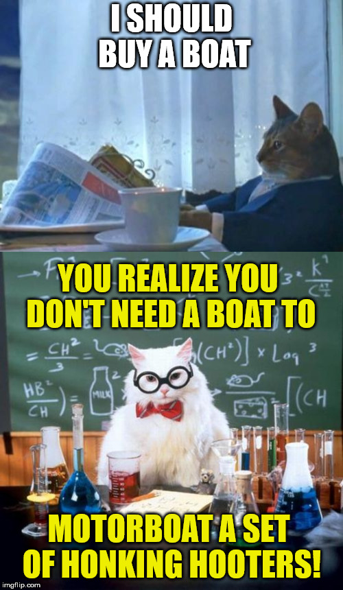 did you ever wonder why he wanted a boat | I SHOULD BUY A BOAT MOTORBOAT A SET OF HONKING HOOTERS! YOU REALIZE YOU DON'T NEED A BOAT TO | image tagged in i should buy a boat cat,chemistry cat,honking hooters | made w/ Imgflip meme maker