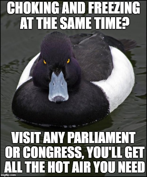 hi res angry advice mallard | CHOKING AND FREEZING AT THE SAME TIME? VISIT ANY PARLIAMENT OR CONGRESS, YOU'LL GET ALL THE HOT AIR YOU NEED | image tagged in hi res angry advice mallard | made w/ Imgflip meme maker