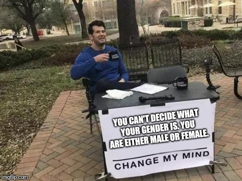 There are two genders | YOU CAN'T DECIDE WHAT YOUR GENDER IS. YOU ARE EITHER MALE OR FEMALE. | image tagged in change my mind | made w/ Imgflip meme maker