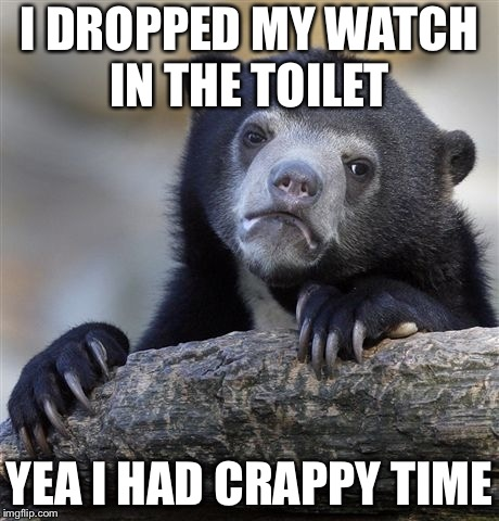 Crappy time | I DROPPED MY WATCH IN THE TOILET YEA I HAD CRAPPY TIME | image tagged in memes,confession bear | made w/ Imgflip meme maker