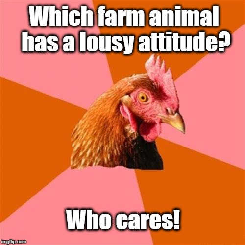 Anti Joke Chicken | Which farm animal has a lousy attitude? Who cares! | image tagged in memes,anti joke chicken | made w/ Imgflip meme maker