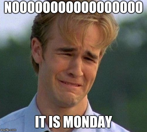 1990s First World Problems Meme | NOOOOOOOOOOOOOOOOO IT IS MONDAY | image tagged in memes,1990s first world problems | made w/ Imgflip meme maker