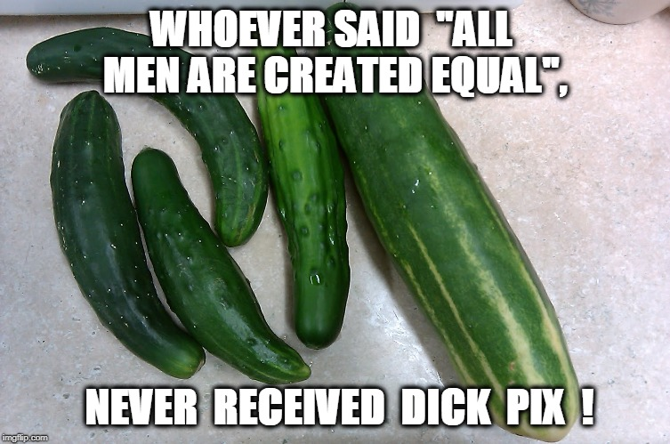 "Sad but True ! | WHOEVER SAID ""ALL MEN ARE CREATED EQUAL"", NEVER  RECEIVED  DICK  PIX  ! 