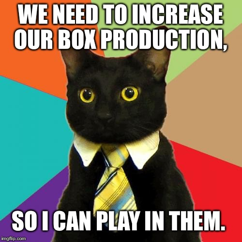 Business Cat Meme | WE NEED TO INCREASE OUR BOX PRODUCTION, SO I CAN PLAY IN THEM. | image tagged in memes,business cat | made w/ Imgflip meme maker