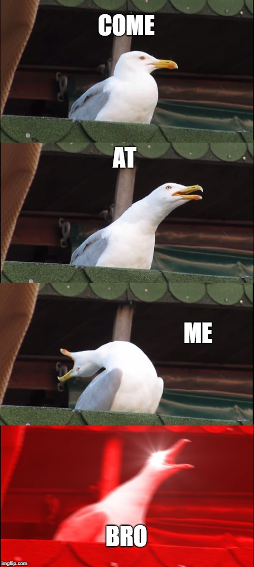 Seagull is cooler than any person | COME AT ME BRO | image tagged in memes,inhaling seagull | made w/ Imgflip meme maker