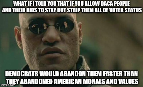 The Democrat Matrix | WHAT IF I TOLD YOU THAT IF YOU ALLOW DACA PEOPLE AND THEIR KIDS TO STAY BUT STRIP THEM ALL OF VOTER STATUS DEMOCRATS WOULD ABANDON THEM FAST | image tagged in memes,illegal immigration,occupy democrats,daca,corruption,voter fraud | made w/ Imgflip meme maker