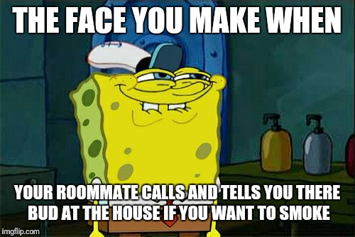 Dont You Squidward Meme | THE FACE YOU MAKE WHEN YOUR ROOMMATE CALLS AND TELLS YOU THERE BUD AT THE HOUSE IF YOU WANT TO SMOKE | image tagged in memes,dont you squidward | made w/ Imgflip meme maker