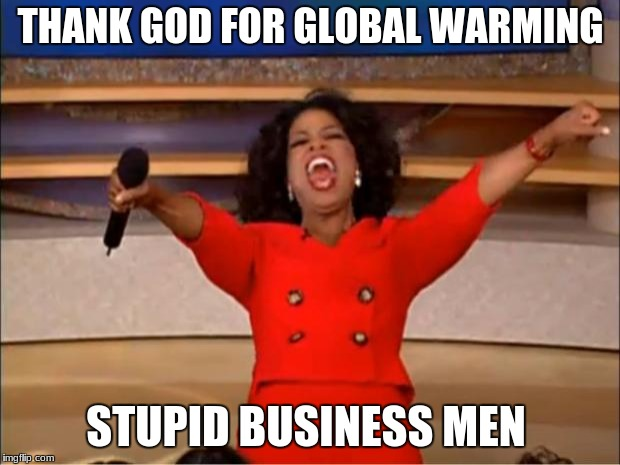 Oprah You Get A Meme | THANK GOD FOR GLOBAL WARMING STUPID BUSINESS MEN | image tagged in memes,oprah you get a | made w/ Imgflip meme maker