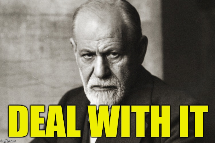 Sigmund Freud: Id Is What Id Is | DEAL WITH IT | image tagged in sigmund freud | made w/ Imgflip meme maker