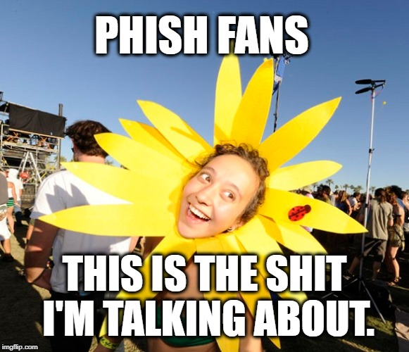 Phish Phans, am I right? | PHISH FANS THIS IS THE SHIT I'M TALKING ABOUT. | image tagged in phish,hippy,hippie,hippies,grateful dead,concert | made w/ Imgflip meme maker
