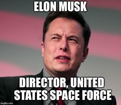 ELON MUSK DIRECTOR, UNITED STATES SPACE FORCE | image tagged in elon musk wat | made w/ Imgflip meme maker