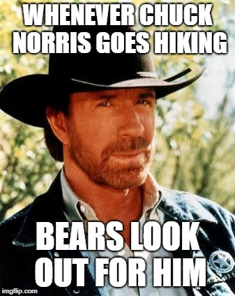 Chuck Norris | WHENEVER CHUCK NORRIS GOES HIKING BEARS LOOK OUT FOR HIM | image tagged in memes,chuck norris | made w/ Imgflip meme maker