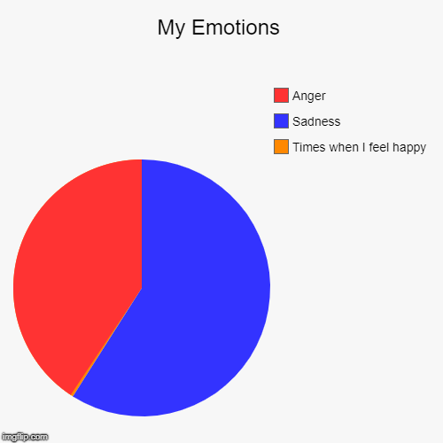 My Emotions | Times when I feel happy, Sadness, Anger | image tagged in funny,pie charts | made w/ Imgflip pie chart maker