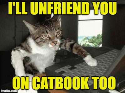 I'LL UNFRIEND YOU ON CATBOOK TOO | made w/ Imgflip meme maker