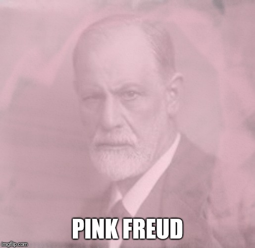 Make sure you know how to pronounce it or it won't make sense | PINK FREUD | image tagged in sigmund freud,pink floyd,memes | made w/ Imgflip meme maker