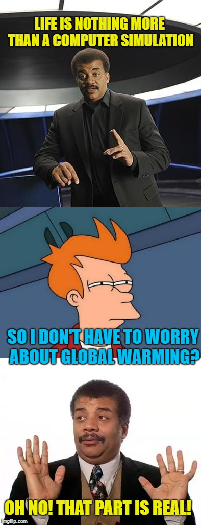 Skeptical   | LIFE IS NOTHING MORE THAN A COMPUTER SIMULATION SO I DON'T HAVE TO WORRY ABOUT GLOBAL WARMING? OH NO! THAT PART IS REAL! | image tagged in funny memes,science,neil degrasse tyson,pseudoscience | made w/ Imgflip meme maker