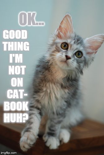 OK... GOOD THING I'M  NOT  ON  CAT- BOOK HUH? | made w/ Imgflip meme maker