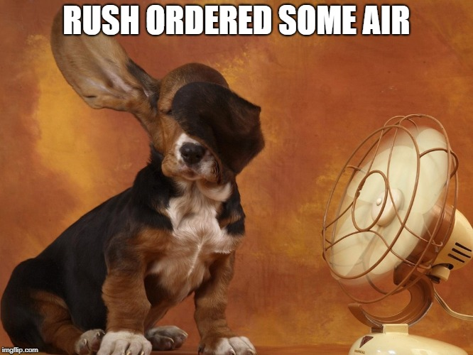 breeze | RUSH ORDERED SOME AIR | image tagged in breeze | made w/ Imgflip meme maker