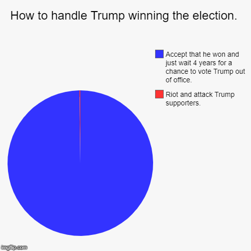 How to handle Trump winning the election. | Riot and attack Trump supporters., Accept that he won and just wait 4 years for a chance to vote | image tagged in funny,pie charts | made w/ Imgflip pie chart maker