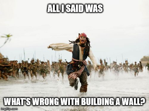 Jack Sparrow Being Chased Meme | ALL I SAID WAS WHAT'S WRONG WITH BUILDING A WALL? | image tagged in memes,jack sparrow being chased | made w/ Imgflip meme maker