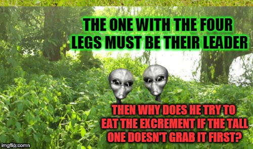 THEN WHY DOES HE TRY TO EAT THE EXCREMENT IF THE TALL ONE DOESN'T GRAB IT FIRST? | made w/ Imgflip meme maker