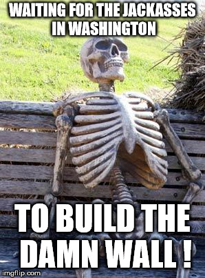 Waiting Skeleton Meme | WAITING FOR THE JACKASSES IN WASHINGTON TO BUILD THE DAMN WALL ! | image tagged in memes,waiting skeleton | made w/ Imgflip meme maker