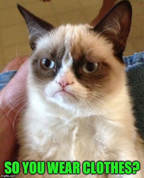 Grumpy Cat Meme | SO YOU WEAR CLOTHES? | image tagged in memes,grumpy cat | made w/ Imgflip meme maker