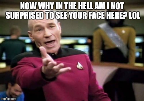 Picard Wtf Meme | NOW WHY IN THE HELL AM I NOT SURPRISED TO SEE YOUR FACE HERE? LOL | image tagged in memes,picard wtf | made w/ Imgflip meme maker