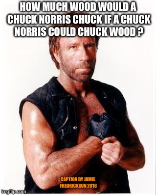 Chuck Norris Flex Meme | HOW MUCH WOOD WOULD A CHUCK NORRIS CHUCK IF A CHUCK NORRIS COULD CHUCK WOOD ? CAPTION BY JAMIE FREDRICKSON 2018 | image tagged in memes,chuck norris flex,chuck norris | made w/ Imgflip meme maker