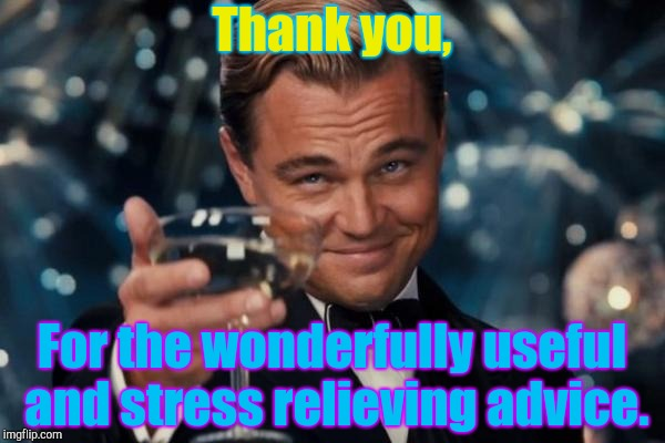 Leonardo Dicaprio Cheers Meme | Thank you, For the wonderfully useful and stress relieving advice. | image tagged in memes,leonardo dicaprio cheers | made w/ Imgflip meme maker