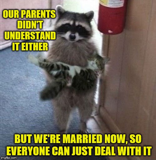 Love conquers all. (A KenJ request) | OUR PARENTS DIDN'T UNDERSTAND IT EITHER BUT WE'RE MARRIED NOW, SO EVERYONE CAN JUST DEAL WITH IT | image tagged in raccoon carrying cat,memes,marriage,star-crossed lovers,cats,kenj | made w/ Imgflip meme maker