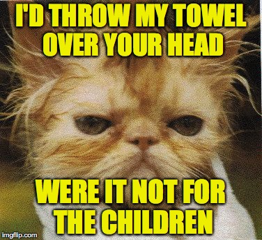 I'D THROW MY TOWEL OVER YOUR HEAD WERE IT NOT FOR THE CHILDREN | made w/ Imgflip meme maker