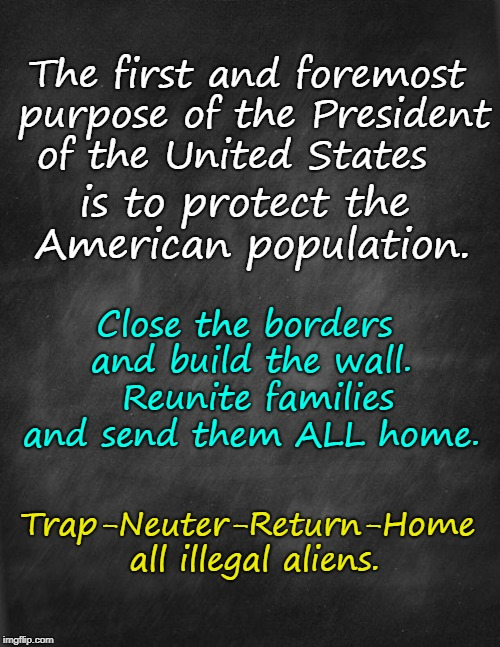 Purpose of President: Protect American Population | The first and foremost purpose of the President of the United States is to protect the American population. Close the borders and build the  | image tagged in space gal from the future of yesterday,close borders,send illegals home | made w/ Imgflip meme maker