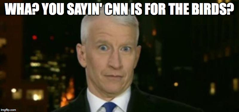 WHA? YOU SAYIN' CNN IS FOR THE BIRDS? | made w/ Imgflip meme maker