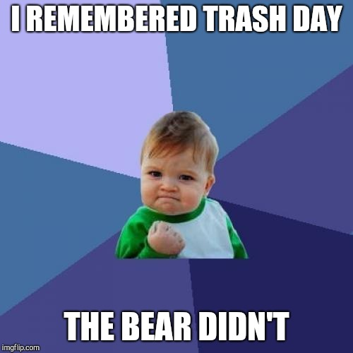 Success Kid Meme | I REMEMBERED TRASH DAY THE BEAR DIDN'T | image tagged in memes,success kid | made w/ Imgflip meme maker