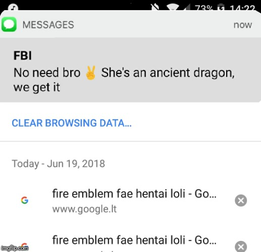 . | image tagged in fire emblem,fbi,loli,hentai | made w/ Imgflip meme maker