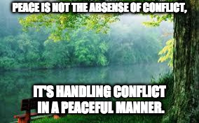 Nature | PEACE IS NOT THE ABSENSE OF CONFLICT, IT'S HANDLING CONFLICT IN A PEACEFUL MANNER. | image tagged in nature | made w/ Imgflip meme maker