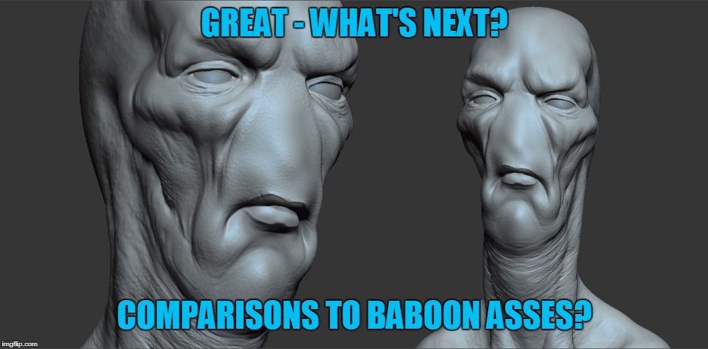 GREAT - WHAT'S NEXT? COMPARISONS TO BABOON ASSES? | made w/ Imgflip meme maker