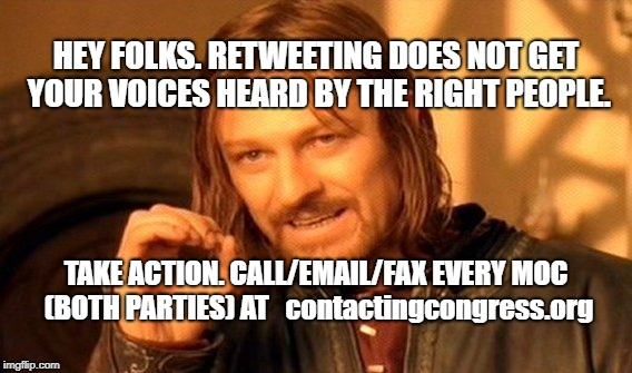 One Does Not Simply Meme | HEY FOLKS. RETWEETING DOES NOT GET YOUR VOICES HEARD BY THE RIGHT PEOPLE. TAKE ACTION. CALL/EMAIL/FAX EVERY MOC (BOTH PARTIES) AT   contacti | image tagged in memes,one does not simply | made w/ Imgflip meme maker