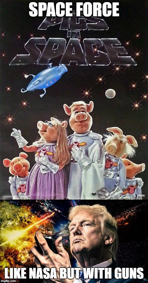PIGS IN SPACE | SPACE FORCE LIKE NASA BUT WITH GUNS | image tagged in trump,donald trump is an idiot | made w/ Imgflip meme maker