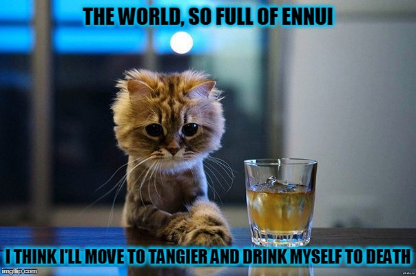 but first I'll grow a beard | THE WORLD, SO FULL OF ENNUI I THINK I'LL MOVE TO TANGIER AND DRINK MYSELF TO DEATH | image tagged in contemplating cat,memes,drinking | made w/ Imgflip meme maker