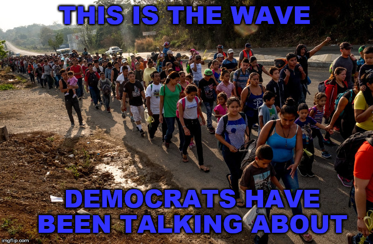 THIS IS THE WAVE DEMOCRATS HAVE BEEN TALKING ABOUT | image tagged in democrats,blue wave,illegal immigration | made w/ Imgflip meme maker