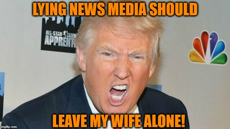 It's not fair, people |  LYING NEWS MEDIA SHOULD; LEAVE MY WIFE ALONE! | image tagged in trump mad | made w/ Imgflip meme maker