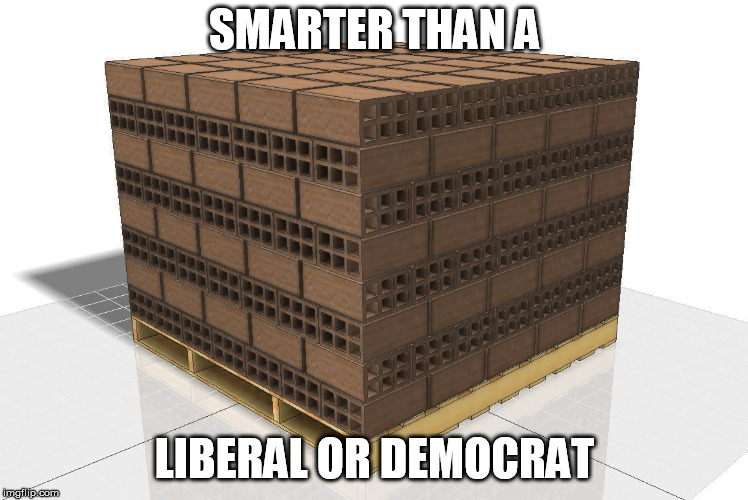 SMARTER THAN A LIBERAL OR DEMOCRAT | image tagged in democrats | made w/ Imgflip meme maker