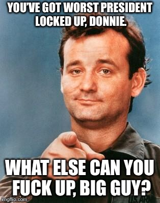 Bill Murray You're Awesome | YOU'VE GOT WORST PRESIDENT LOCKED UP, DONNIE. WHAT ELSE CAN YOU F**K UP, BIG GUY? | image tagged in bill murray you're awesome | made w/ Imgflip meme maker